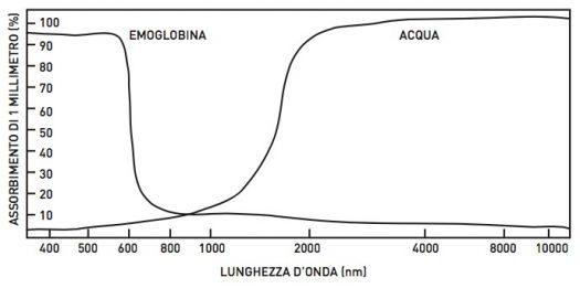 marcello-baldacchini-lunghezza-onda-luce-infrarossa-acqua-emoglobina